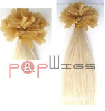 Faltの融合のブラジルの毛の拡張(PPG-l-014147)