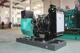 Professionele 220V Diesel Stille Generators