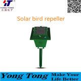 L'énergie solaire pour oiseaux Repeller ravageurs à ultrasons