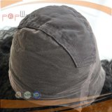 싼 가격 아프로 꼬부라진 사람의 모발 가득 차있는 레이스 가발 (PPG-l-0332)
