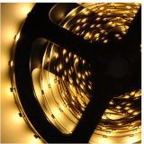 RGB/W 300LEDs SMD2835 5m flexible LED Streifen-Lichter für Schrank-Beleuchtung, Backlighting und Bildschirmanzeigen