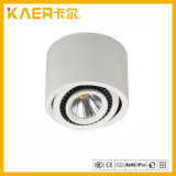 13W el redondo superficial ahorro de energía LED abajo se enciende