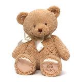 Het Zachte Stuk speelgoed van de Gift van de teddybeer