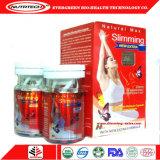 Capsule sottili della polvere di perdita di peso di misura di alta qualità all'ingrosso
