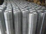 Rete metallica galvanizzata Rolls/strato saldato della rete metallica