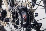 리튬 건전지 금 색깔 MSDS 보고를 가진 보조 자전거 발동기 달린 자전거