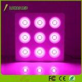 las series 7-Band LED del reflector de la MAZORCA de las luces de la planta de 200W 400W 600W 800W 1200W 1600W 1800W LED crecen ligeras para las plantas de invernadero hidropónicas Veg y la flor