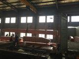 Мастерская оборудует европейский тип кран кран одиночного прогона 10 тонн надземный