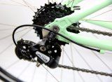 Buena bicicleta de la aptitud del nuevo producto del precio (FX7.1)