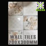 Glasig-glänzende keramische Badezimmer-und Küche-innere Wand-Fliesen 20X30