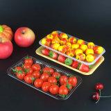 O Pet transparente de plástico biodegradável Retacgular Bandeja de frutas