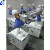 医学の教授歯科シミュレーター、歯科幻影のヘッドトレーニングのシミュレーター
