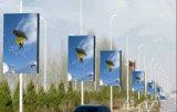 Интеллектуального освещения улиц полюс светодиодной панели дисплея