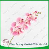 De beste Bloemen van de Orchideeën van de Vlinder van de Zijde van de Gunsten van het Huwelijk van de Verkoop voor het Huis van het Huwelijk
