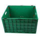 Caixas de armazenamento de Logística de plástico