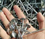 Гальванизированные ногти толя зонтика головные, настилающ крышу ногти