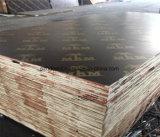 el negro de 1220X2440m m/la película de Brown hizo frente a la madera contrachapada para la construcción