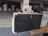 中国の現代ソファー、居間(A012)の革ソファー