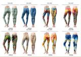 Культуризм Оптовая торговля одеждой Legging тренировки, брюки для занятий йогой