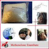 303-42-4 99% 순수성 Primobolan 스테로이드 분말 Methenolone Enanthate