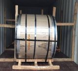 Galvanized preverniciato Steel Coil con Many Colors