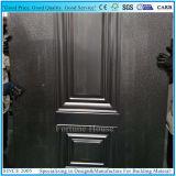 يزيّن معدن لوح لأنّ فولاذ أبواب صناعة