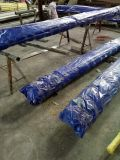 Edelstahl/Stahlprodukte/Stahlplatte/Stahlring SUS316ln (316LN STS316L)