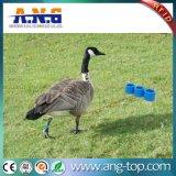 家禽管理のための134.2kHz ABS RFID動物フィートバンド札
