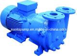 회전하는 Vane Vacuum Pump (2X)