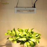 400W 2 옥수수 속 LED는 가벼운 가득 차있는 스펙트럼 묘종 램프를 증가한다