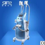 機械脂肪質のフリーズのCryolipolysisレーザー療法を細くする超音波キャビテーションRF