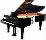 88의 키 그랜드 피아노 또는 흑단 Polished 청각적인 침묵하는 피아노 (GP275)