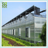 저가 상업적인 기후 통제 폴리탄산염 녹색 집