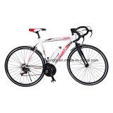 700c/vélo Vélo fixe, Cross moto/vélo 1-SPD (YD16TM-70516)