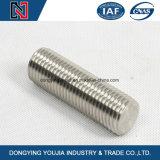 Bonne qualité acier inoxydable 304 filetage DIN975