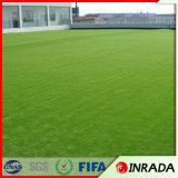 [سبورت فيلد] تصميم أساليب مختلفة عشب اصطناعيّة لأنّ جدار