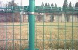 Cerca doble revestida de los bucles de Galvanized/PVC en China