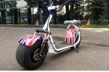 Heißes populäres Halley elektrisches Roller-Motorrad-Stadt-Auto 1000W 60V12ah für Erwachsenen (EE-001)