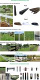 Plastikvinylpfosten, Qualitäts-preiswerter Pferden-Zaun, Vinylzaun