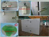 Kühlraum lagerte Tür mit angestrichenem galvanisiertem Stahl schwenkbar (Gleichstrom)