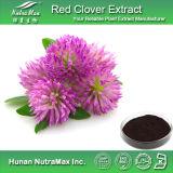 100% натуральные красный клевер АКАДЕМИЯ 60% Isoflavones (CAS нет: 977150-97-2)