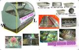 Vetrina B7 della visualizzazione del gelato della fabbrica di Guangzhou