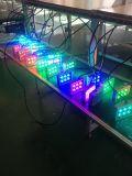 Indicatore luminoso del punto della piattaforma LED per il giardino
