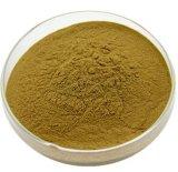 Tamarindo solubile in acqua della migliore di prezzi del rifornimento della fabbrica polvere del tamarindo