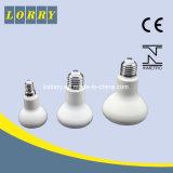 高品質およびRoburst LEDの球根Ksl-Lbr6308