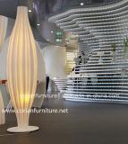 Lampe debout d'étage élégant de créateur de Corian Translucet