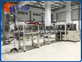 Envolver en el caso/empacadora de cartón para botella de vidrio Máquina de embalaje (V-PAK WJ-LGB-12)