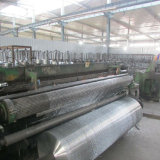 Galvanized Welded Wire Mesh/Hot Dipped Galvanized Welded Mesh Roll
