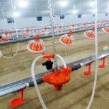 Construction de structure métallique pour le poulet avec le système de régulation d'environnement