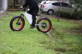 大人のための1500W 48V 26inch浜の電気脂肪質のバイク